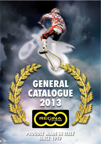 Motorcycle chains product range