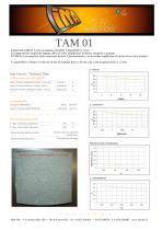 TAM 01