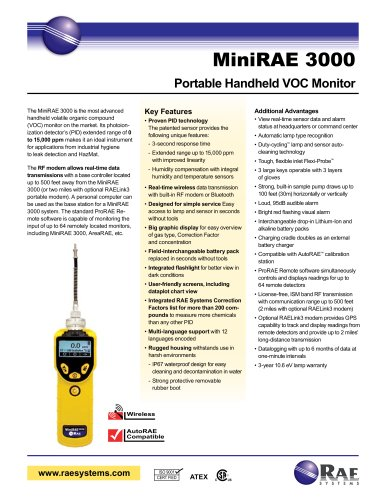 MiniRAE 3000