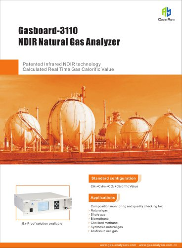 Ruiyi  NDIR Natural Gas Analyzer Gasboard-3110