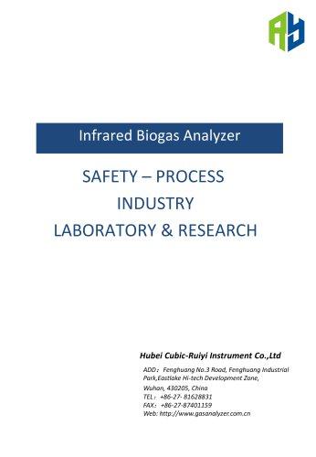 Ruiyi Online Infrared Biogas Analyzer Gasboard 3200