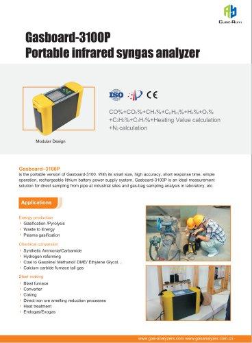 Ruiyi Portable Infrared Syngas Analyzer Gasboard 3100P