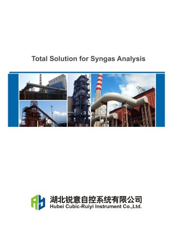 Ruiyi Total Solution for Syngas Analysis