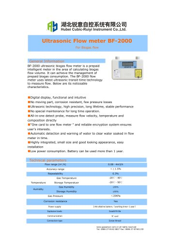 Ruiyi Ultrasonic Flow meter BF-2000