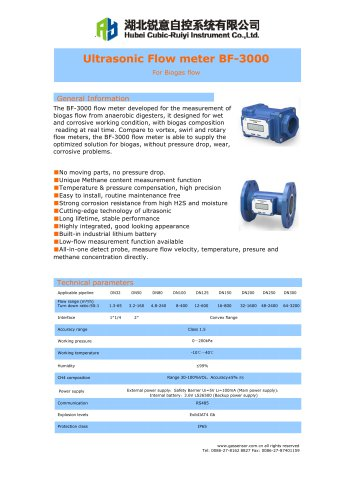 Ruiyi Ultrasonic Flow meter BF-3000