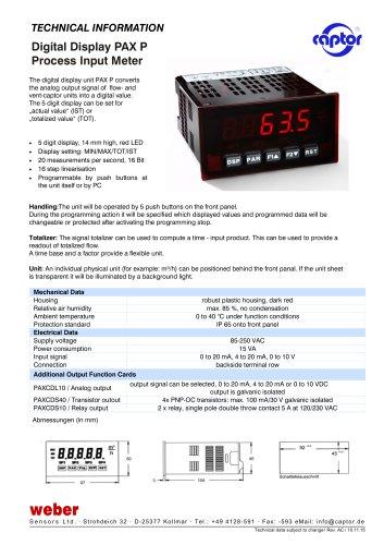 Digital Display PAX P Process Input Meter