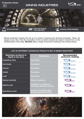 Profession Sheet - Minning Industries