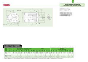 NEMA 3 phase induction motors - 14