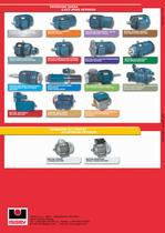 NEMA 3 phase induction motors - 16