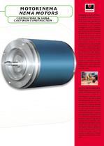 NEMA 3 phase induction motors - 3