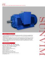 High-voltage motor Y2 series