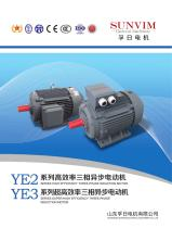 Three-phase motor YE2 series