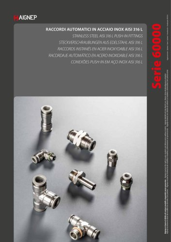 STAINLESS STEEL PUSH-IN/PUSH-ON FITTINGS, ACCESSORIES AND MULTISOKET