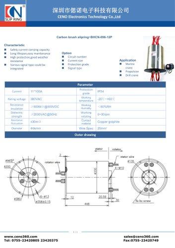 CENO Carbon brush slipring BHCN-096-12P