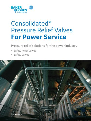 Pressure Relief Valves For Power Service
