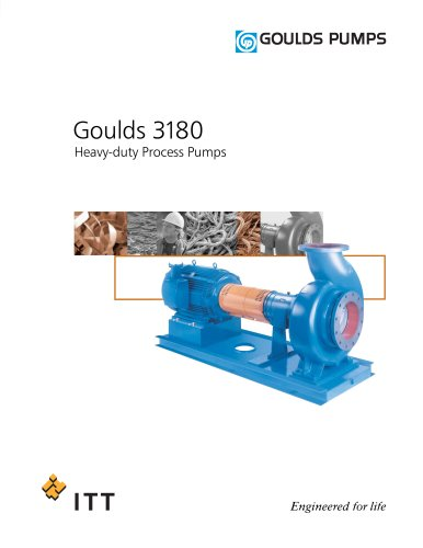 Goulds 3180 Heavy-duty Process Pumps