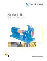 Goulds 3185 Heavy-duty Process Pumps - 1