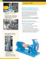 Goulds 3185 Heavy-duty Process Pumps - 2