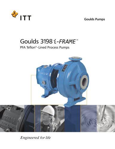 Goulds 3198 i-FRAME