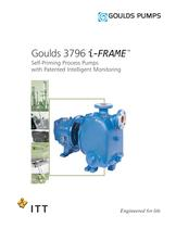 Goulds 3796 - 1