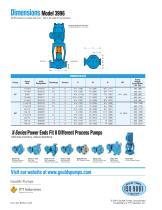 Goulds 3996 In-Line Process Pumps - 9