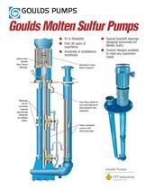 Goulds Molten Sulfur Pumps - 1