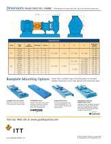 Goulds NM 3196 i-FRAME FRP Process Pumps - 11