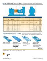 Goulds NM3196 i-FRAME FRP Process Pumps - 11