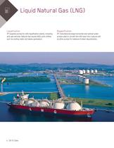 Products for the Oil and Gas Industry - 6