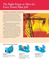 Pumps for Power Generation - 6