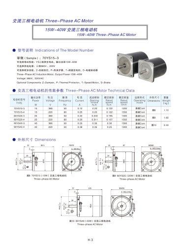DYD MOTOR_15W ~ 40W Three Phase AC Motor