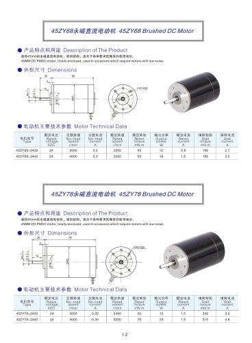 DYD MOTOR_Brushed DC Motor_45ZY78