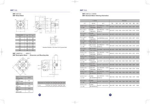 BMT hydraulic gear pump