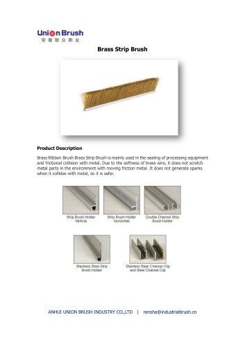 Brass Strip Brush