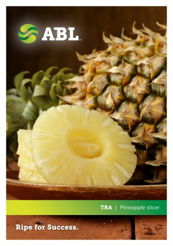 Pineapple Cilynder Cutting Machine