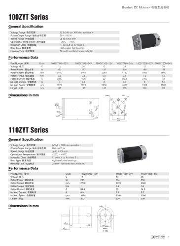 DC MOTOR/BRUSHED/100ZYT Series