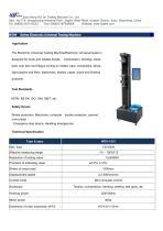 WDS Series Electronic Universal Testing Machine