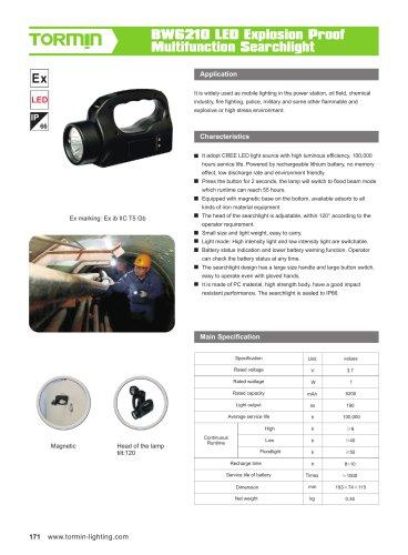 BW6210 portable light