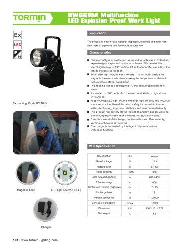 BW6610A portable light