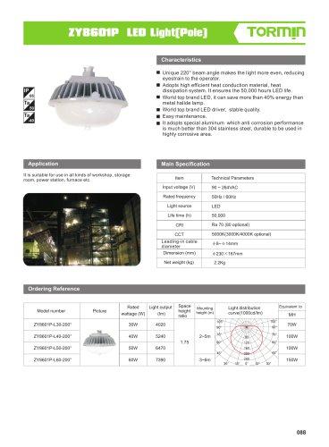 ZY8601P non ex fixed professional light