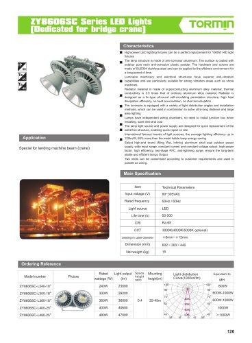 ZY8606SC non ex fixed professional light