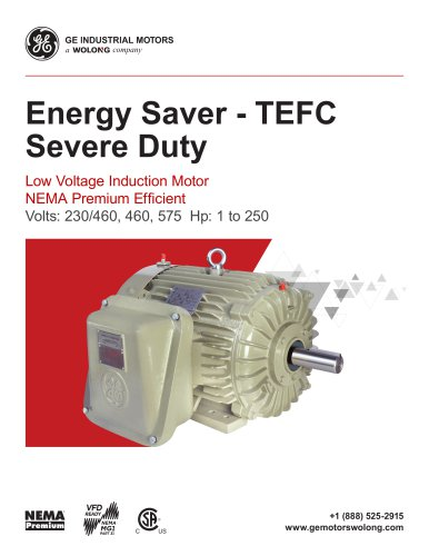 Energy Saver - TEFC Severe Duty