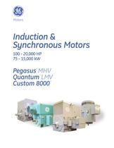 Induction and Synchronous Motors - 1
