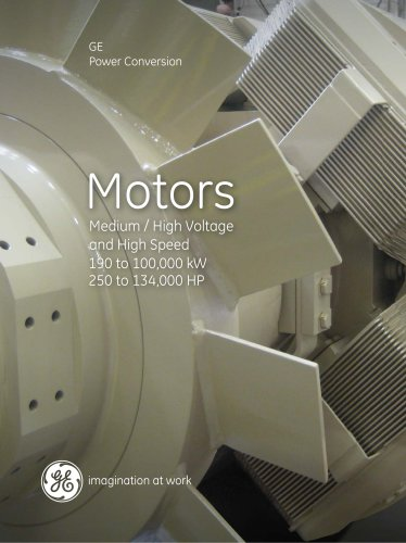 Medium & High Voltage and High Speed Motors