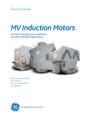 MV Induction Motors 500-7500 HP, 400-5600 kW