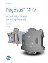 Pegasus MHV - AC Induction Motors Vertically Mounted - 1