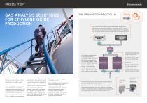 ES 31 Industrial Process & Emissions - 5