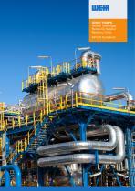 Lewis Vertical Centrifugal Pumps Brochure - 1