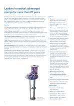 Lewis Vertical Centrifugal Pumps Brochure - 2