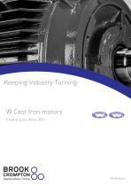 W Cast Iron motors